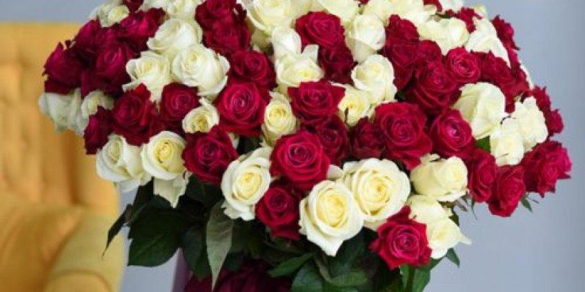 Цветы на 14 Февраля –как выбрать букет. Топ советов флористов
