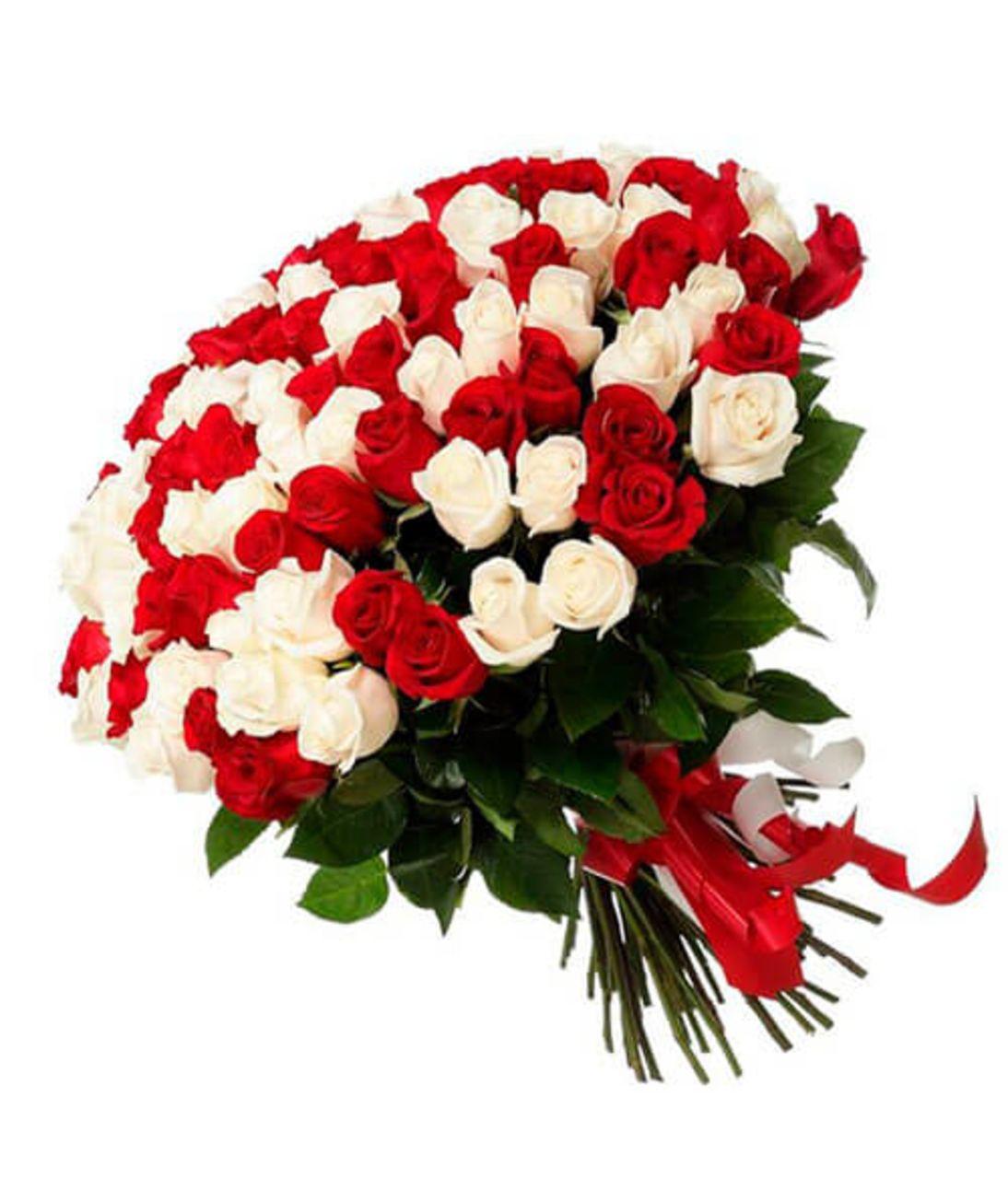 Букет из 101 красной и белой розы. Superflowers.com.ua