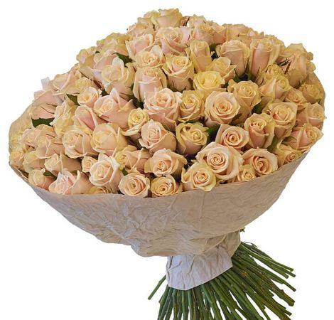 Букет из 101 розы Талея. Superflowers.com.ua. Купить 101 кремовую розу Талея