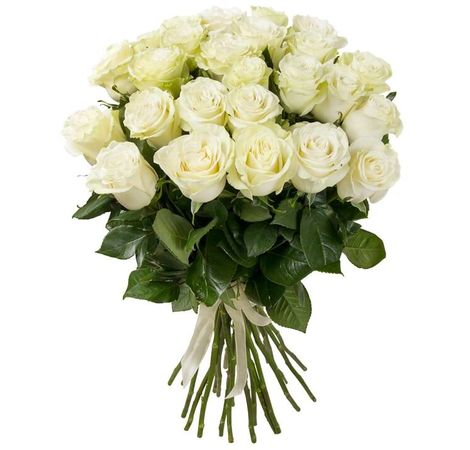 Тіффані. Superflowers.com.ua
