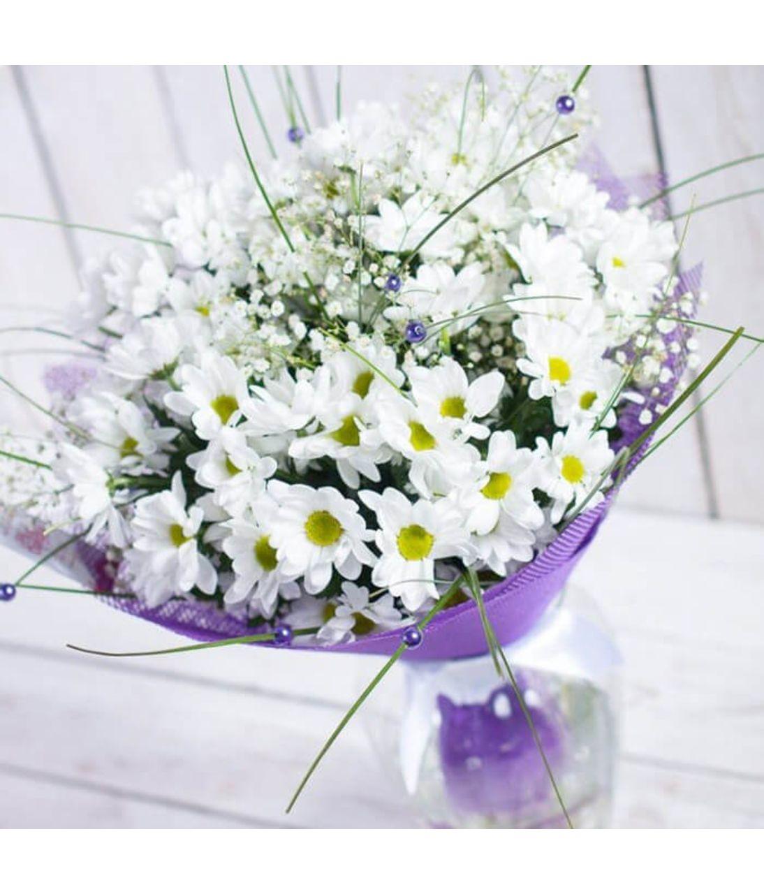 Хризантема бакарді фото. Superflowers.com.ua. Хризантема бакарді біла фото