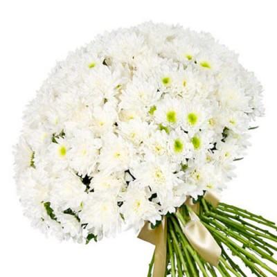 """Букет из 25 хризантемы """"Аврора"""""""