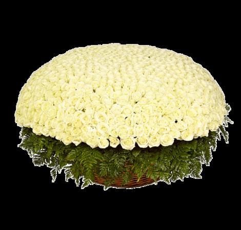 Букет 1001 роза. Superflowers.com.ua