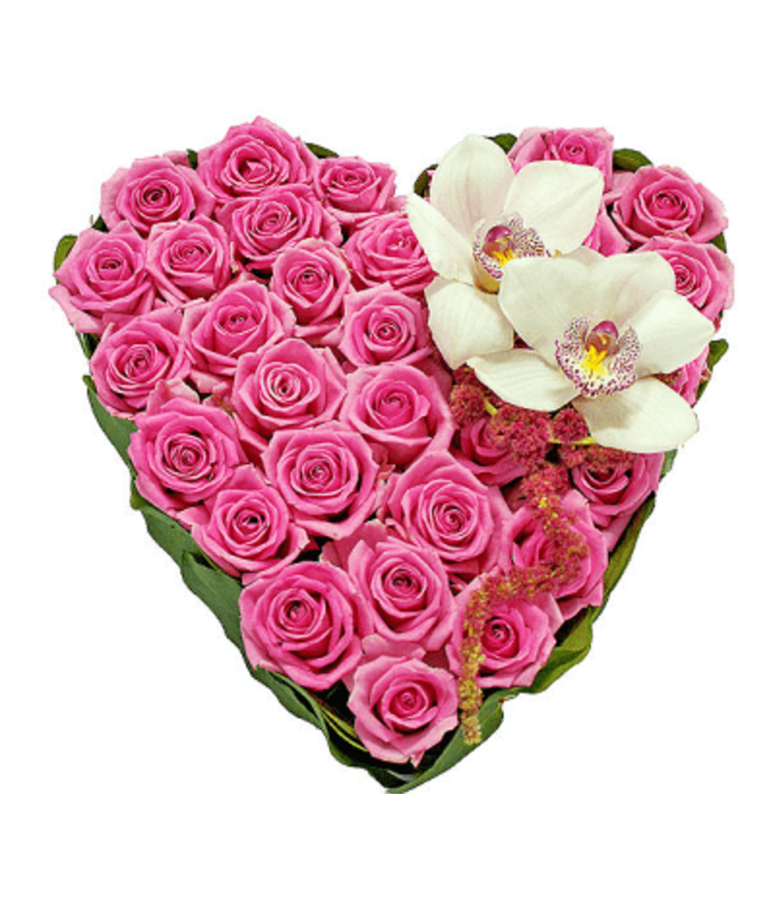 Рожева мрія. Superflowers.com.ua