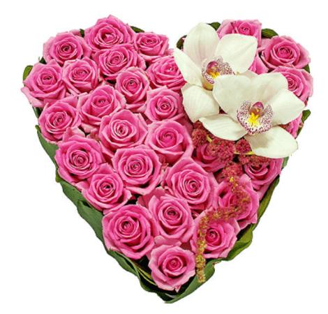 Розовая мечта. Superflowers.com.ua
