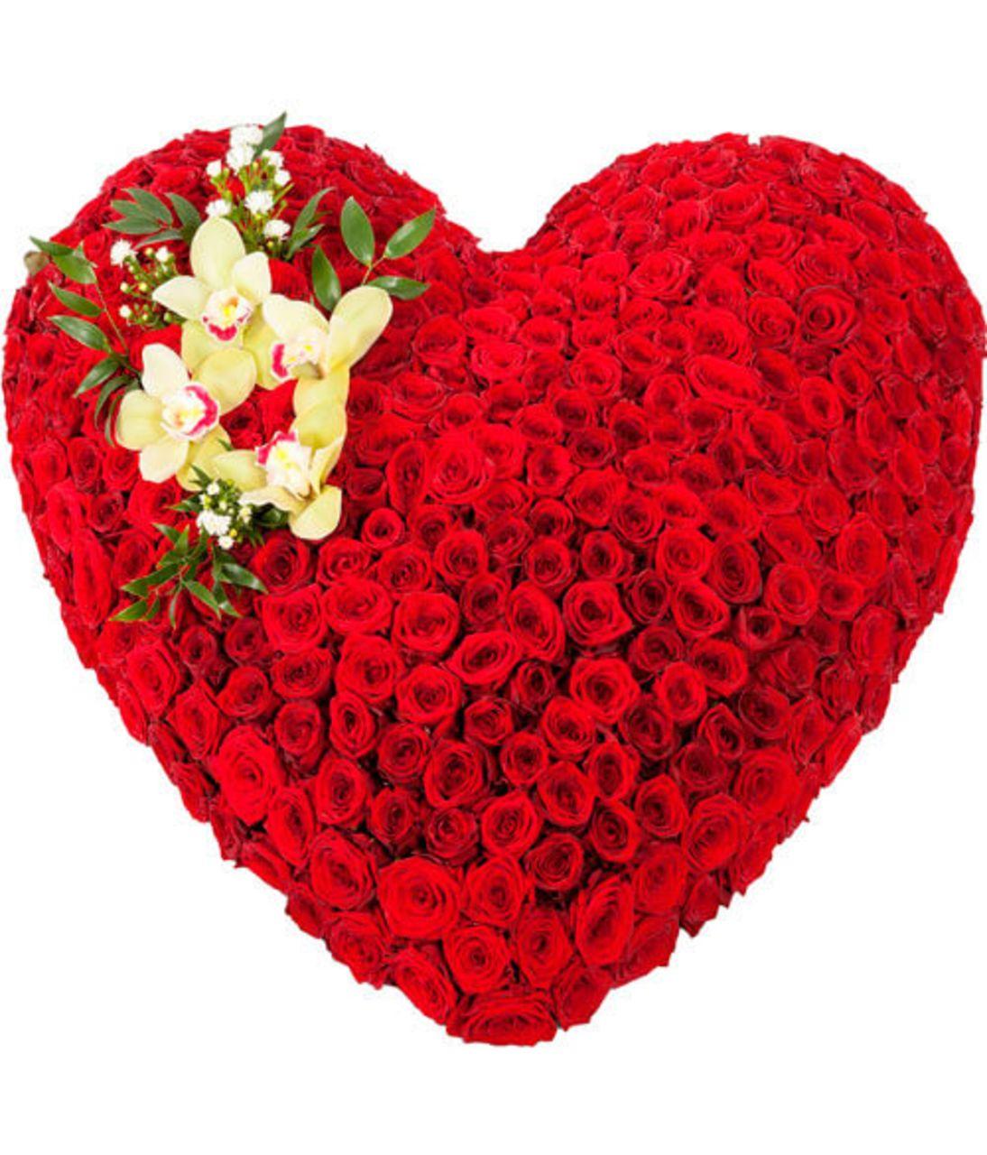 Сердце из 301 розы. Superflowers.com.ua
