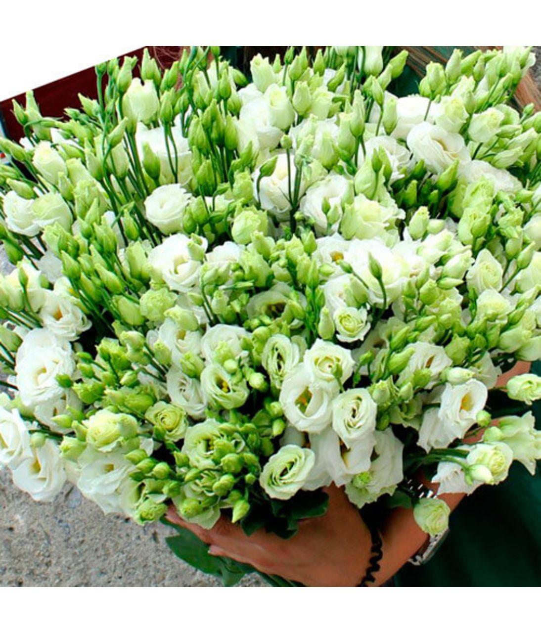 Букет білого естон. Superflowers.com.ua