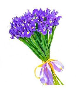 """Букет из 19 синих Ирисов """"Аромат весны"""""""