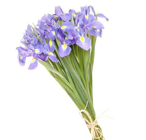 Букет із синіх ірисів. Superflowers.com.ua. Букет ірисів ціна в Києві