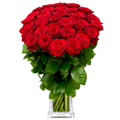 Букет 51 красная роза, 80 см