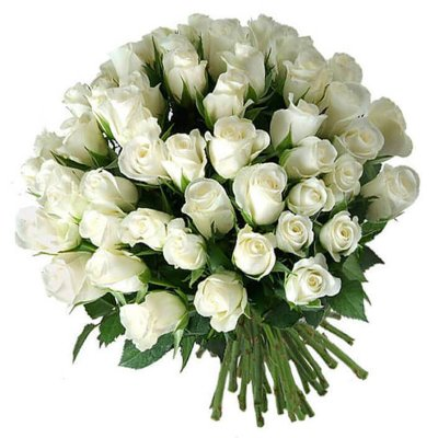 """Букет из 51 белой розы, 60см """"Рафаэлло"""""""