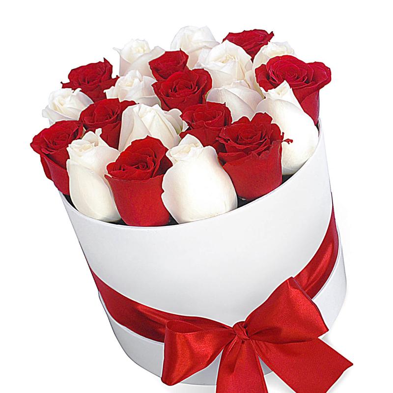 """25 красно-белых роз в шляпной коробке """"Королева роз"""""""