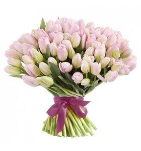 Букет з 101 рожевого тюльпана