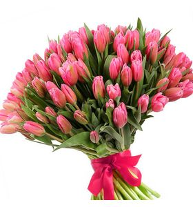 101 рожевий тюльпан