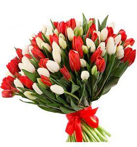 101 тюльпан: червоний та білий
