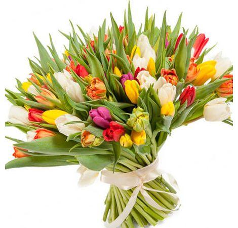 101 тюльпан Микс. Superflowers.com.ua