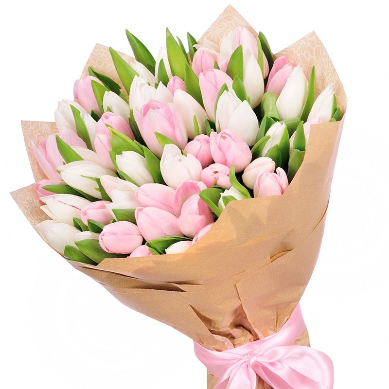 Купити букет з 35 біло-рожевого тюльпана, доставка квітів по Києву - Superflowers