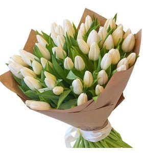 51 белый тюльпан. Superflowers.com.ua