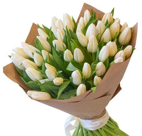 51 білий тюльпан. Superflowers.com.ua