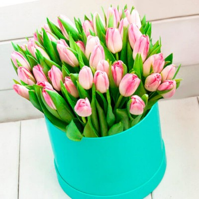 51 рожевий тюльпан в м'ятній шляпній коробці