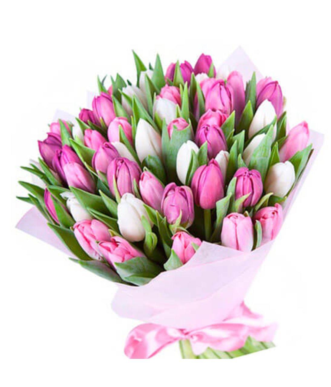 "51 тюльпан ""Бравісимо"". Superflowers.com.ua"