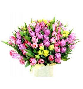 """Букет из 75 тюльпанов """"Большой подарок"""""""