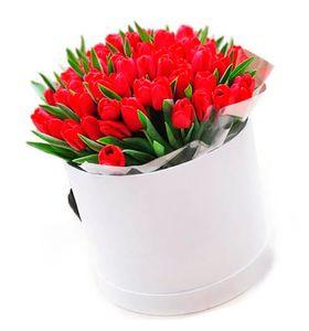 Букет 101 тюльпан в коробке, цвет красный