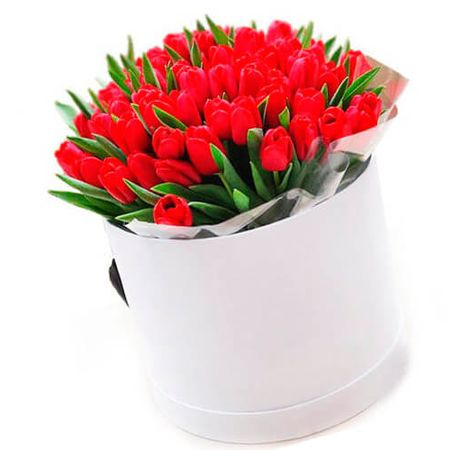 Букет 101 тюльпан в коробке, цвет красный. Superflowers.com.ua