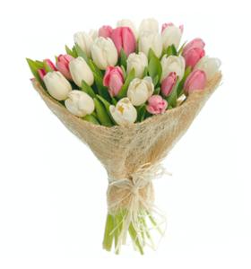 """Букет из 25 тюльпанов """"Бали"""""""