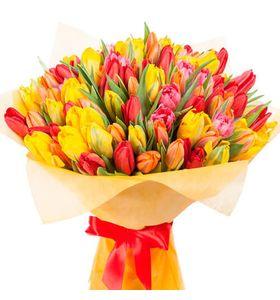 """Букет из 51 тюльпана """"Краски весны"""""""