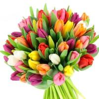 Букет тюльпанов-подарок весны
