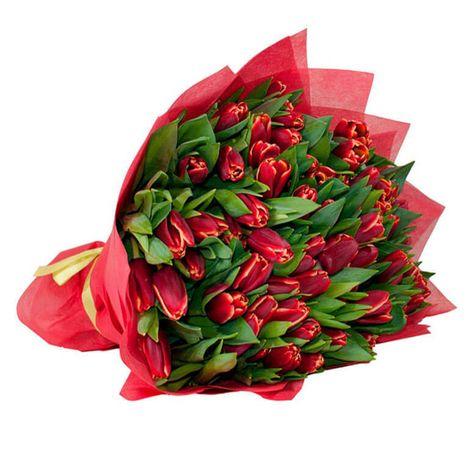 "51 красный тюльпан ""Яркая сказка"". Superflowers.com.ua"