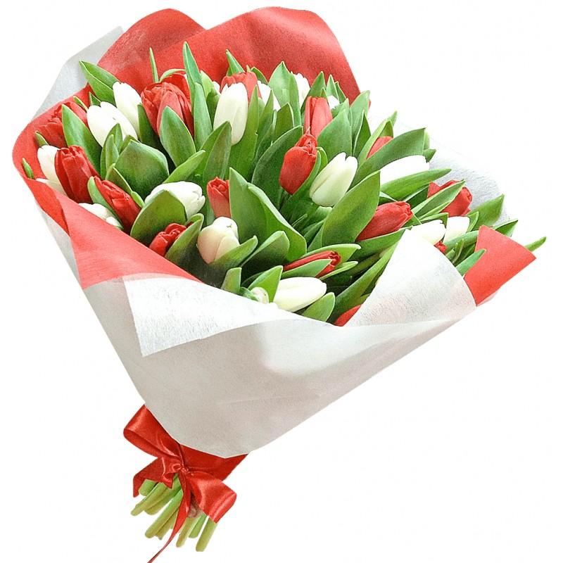 """Купити Букет тюльпанів """"Червоне і біле"""" в Києві, доставка квітів по Україні - Superflowers"""