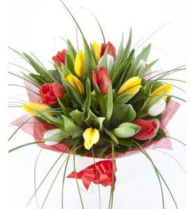 """Букет из 19 тюльпанов микс """"Лучики любви"""""""