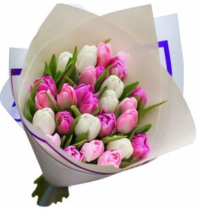 """Композиция из 25 тюльпанов """"Весенний микс"""""""