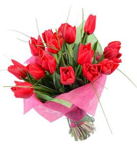 """15 тюльпанов """"Красный луч"""". Superflowers.com.ua"""