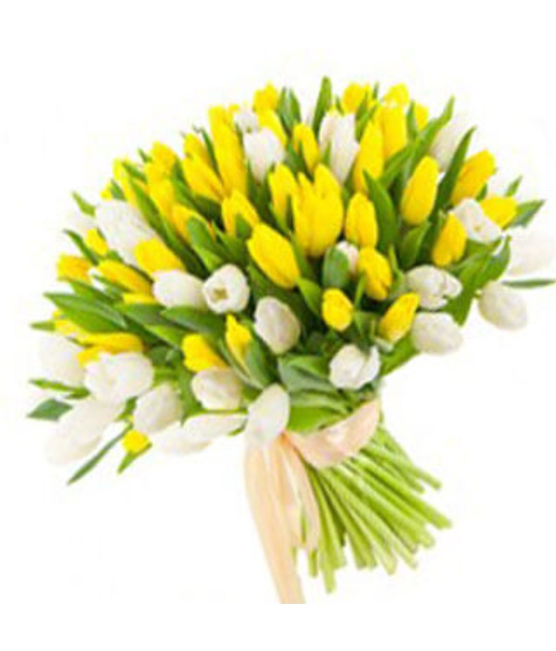 """Букет 101 бело-желтый тюльпан """"Красочный фонтан"""". Superflowers.com.ua"""