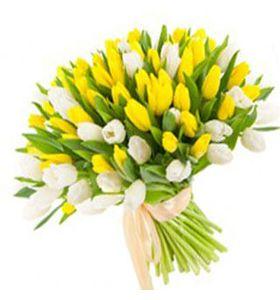 """Букет 101 бело-желтый тюльпан """"Красочный фонтан"""""""
