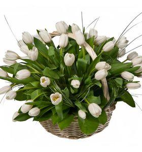 "Корзина белых тюльпанов ""Белое облако"""