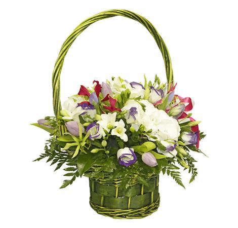 Шампань. Superflowers.com.ua