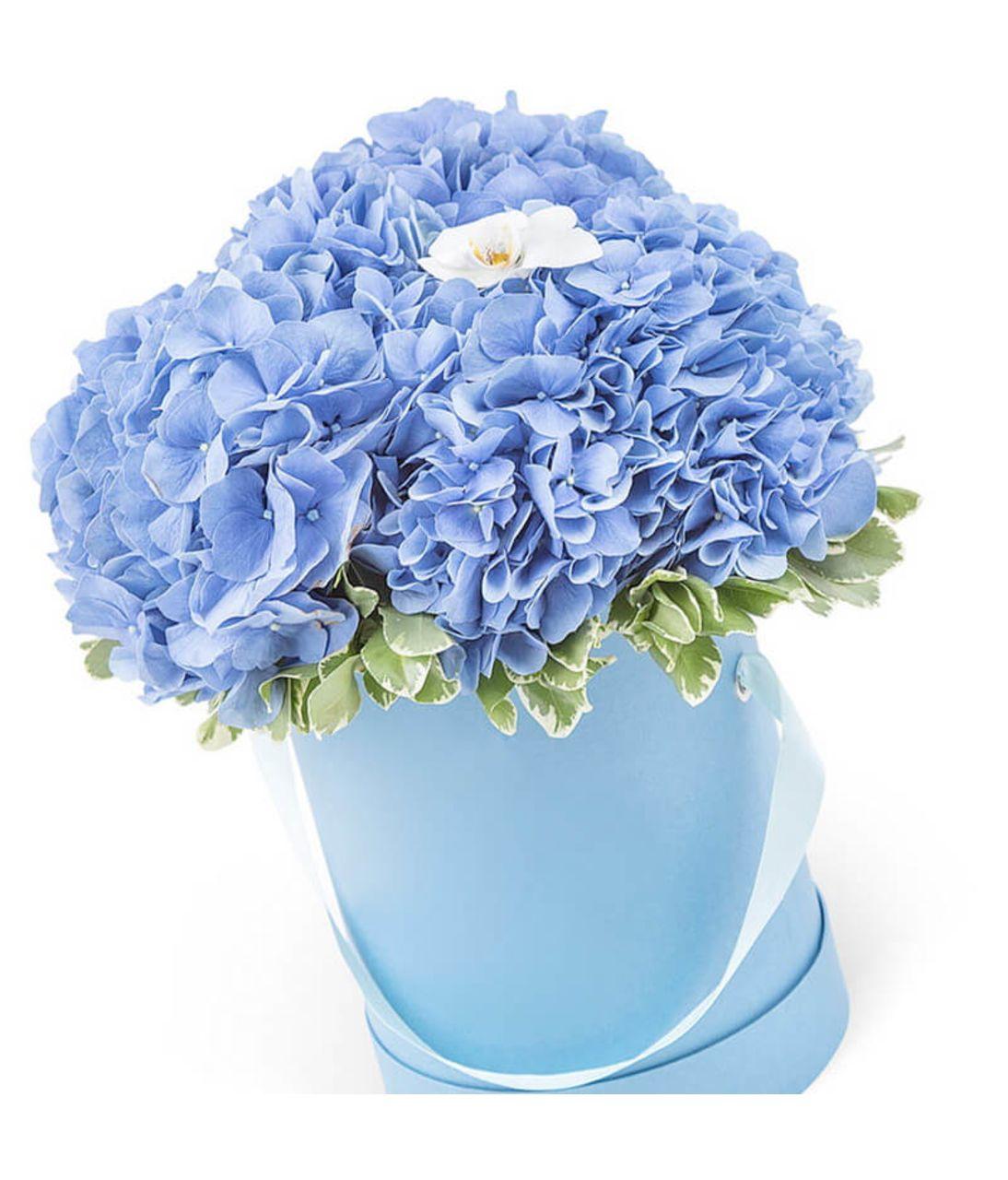 "Букет з синьою гортензією ""Ніжне хмара"". Superflowers.com.ua"