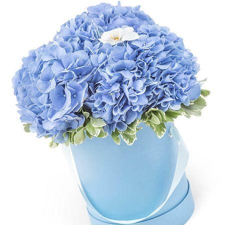 "Букет с синей гортензией ""Нежное облако"". Superflowers.com.ua"
