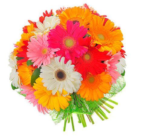 "Букет 17 Гербер ""Тропический коктейль"". Superflowers.com.ua"